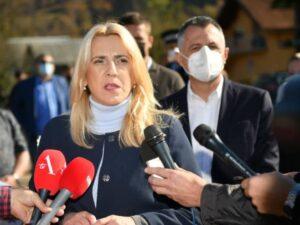Цвијановић о Радојичићу: Поједини из коалиције исто су урадили и прије двије године